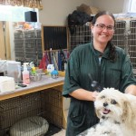 Our skilled groomer, Ashley, provides hair cuts, baths, brush outs, and nail trims for dogs of all shapes and sizes.